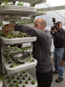 This vertical farm in Vancouver shows the increased efficiency of vertical farming. (Image from vancouverfoodster.com)
